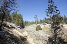 Rokua on Vuoden Retkikohde - Kainuun Sanomat Mountains, Nature, Travel, Outdoor, Geology, Outdoors, Naturaleza, Viajes, Destinations