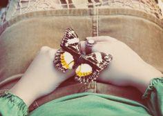 Isn't this pretty?  I love butterflies!