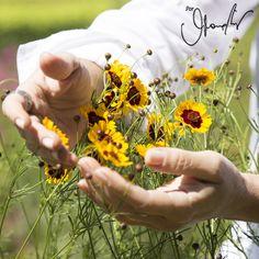 Conheça as terapias que ajudaram Gloria tanto física quanto emocionalmente em diferentes momentos de sua vida: o Reiki e os Florais de Bach!