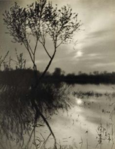 Josef Sudek Untitled (Trees with reflection) silver bromide print, mntd
