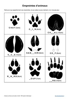 Animal footprints – About Hobby Sports Hunting Stands, Animal Footprints, Dinosaur Tattoos, Lego Knights, Indoor Crafts, Woodland Party, Handicraft, Scout Toujours, Centre