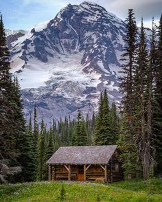 The Cabin Chronicles — Location, Location, Location. Cabin Homes, Log Homes, Forest Cabin, Cabin In The Woods, Little Cabin, Cabins And Cottages, Log Cabins, Cozy Cabin, Mountain Landscape