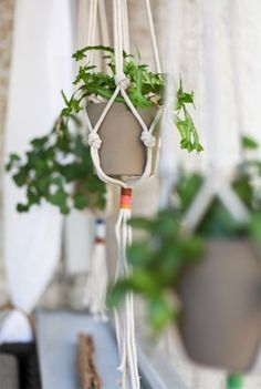 DIY Macrame Hanging Planters: 15 Images to Inspire you!