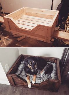 Great Ideas of Pallet Wall Decoration and Storage - Pallet wall planter Ideas Decorating your home with that of pallet ideas and creations is one of the most unbelievable ideas that we found in … Rustic Dog Beds, Wood Dog Bed, Pallet Dog Beds, Pallet Walls, Diy Dog Bed, Wooden Pallet Projects, Wooden Pallet Furniture, Wooden Pallets, Wooden Diy