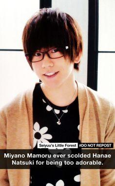 Seiyuu's Little Forest