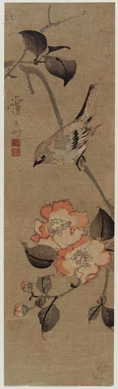 Keisai Eisen: Sparrow and Camellia - Museum of Fine Arts