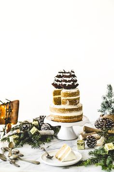 torta al caffè - coffee layer cake - christmas cake Christmas Coffee, Christmas Baking, Xmas, Pavlova, Fun Desserts, Delicious Desserts, Gourmet Cakes, Chewy Brownies, Wine Recipes