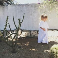 #JensLittlePirates   Photo of Lucca Valentine by Tori Hendrix