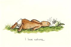 I love nature - rabbit *Anita Jeram*