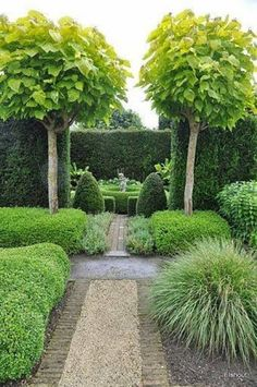 Small Trees For Landscaping Formal Garden , Great Small Trees For Landscaping In Landscaping And Outdoor Building Category