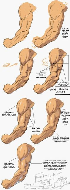 Jacob Romeo EDU: A: Arms and Legs