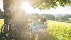 Concert, Bike Rides, Bicycle, Viajes, Concerts