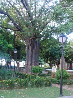 Praça da sé - Fortaleza