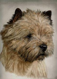 Cairn Terrier Pet Dogs | champion_cairn_terrier___watercolor_pet_portrait_dogs__animals ...