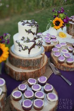 cake/cupcakes display