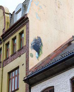 We were thrilled to see C215 @christianguemy latest piece here in Bergen! ------------------------- #bergen #norway #visitbergen #visitnorway #streetart #stencil #stencilart #streetartbergen @vaultstudiosbergen #streetarteverywhere #art #arts #artsy #artist #artwork #instago #instaart #instapic #instacool #instagood #instadaily #instamood #instagram #instaphoto #instamoment #igers #igdaily #c215 #cat #gatekunst #gatekunstbergen Visit Bergen, Street Art Photography, Visit Norway, Stencil Art, Insta Art, Artsy, Tours, In This Moment, Artwork