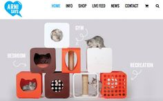 Kitty Kasa Collection- Cat furniture, cat beds, scratching post and cat gym. Each purchase benefits shelter cats by supporting the Arni Foundation.