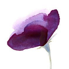 Original Watercolor Flower Paintings and Prints