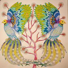 #milliemarotta #wildsavannah #colours #colouringbooks #relax #illustration #arttherapie #kolorowankidladorosłych #birds #paradisebird #nightdrawing #creativecolouring