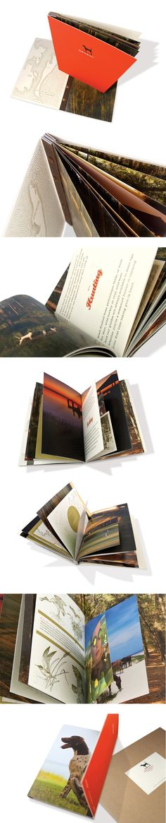 binding and map style Brochure Design Inspiration, Book Design Layout, Design Ideas, Print Design, Logo Design, Graphic Design, Luxury Brochure, Identity Development, Brochure Layout