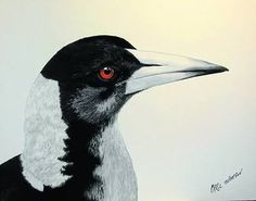 Image result for paintings of magpies