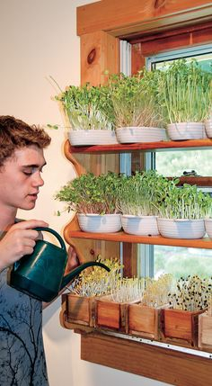 Learn simple and fast ways to grow greens indoors this winter - and all year-round!