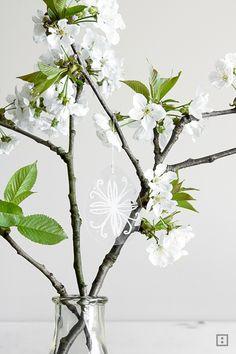 Oh du fröhliche! Nach Winter- folgt Frühlingsstimmung und liebgewonnene Bastelutensilien aus den kalten Tagen dürfen mit ein wenig Feinkosmetik die Leichti
