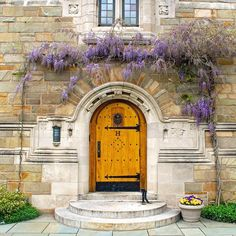From our friends at Yale  @yale - Campus in the Spring is a beautiful thing. #Yale #campus #flowers #inbloom #goviewyou