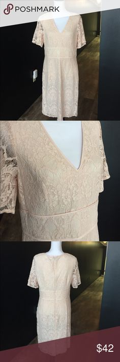 Adrianna papell lovely lace dress new wedding Adrianna papell lovely lace dress new great for wedding or cocktail party . Creamy peach color brand new without tags . Size 12 smoke free pet free home Adrianna Papell Dresses