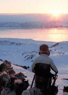 World of Greenland offers a three-day expedition, where a pack of sledding dogs leads the way from Kangerlussuaq to Sisimiut. This region has an average of 300 clear-sky days per year and offers aurora hunters an unfiltered view of the sky.