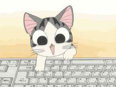 Au programme sur télé kawaii,chi une vie de chat