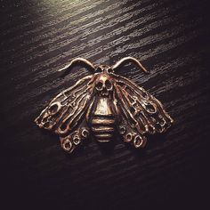 I worked on some new moth pieces today that will soon make an appearance in the shop as necklaces and headpieces  I will keep you posted...