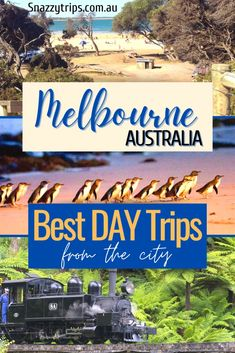 6 Best Day Trips From Melbourne - Perfect short drives from the city for the whole family to enjoy. #melbournetrips #melbournetravel #melbournedrives Travel Inspiration, Travel Ideas, Travel Tips, Travel Goals, Time Travel, Beautiful Places To Visit, Cool Places To Visit, Amazing Places, Amazing Destinations
