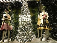 XMAS IN THE CITY OF LIGHTS: PARIS - PinkTrotters