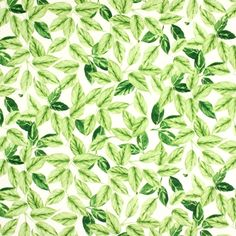 Bayleaf - Evergreen fabric, from the Pickle collection by Prestigious Textiles Curtains Direct, Pvc Fabric, Prestigious Textiles, Pvc Coat, Tablecloth Fabric, Textile Fabrics, Fabric Manipulation, Fabric Wallpaper, Designer Wallpaper