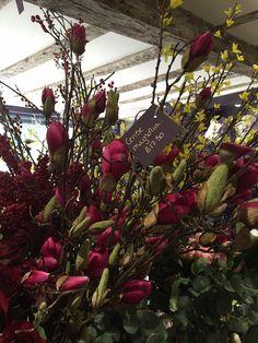 Beautiful cerise magnolia would complete any floral arrangement Faux Flowers, Magnolia, Floral Arrangements, Christmas Wreaths, Seasons, Holiday Decor, Plants, Beautiful, Style