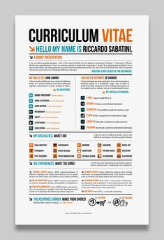 this may be the coolest resume i've ever seen - infographics rocks this decade !