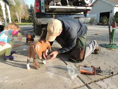 a real farrier.. Those little ones are the devil to trim.