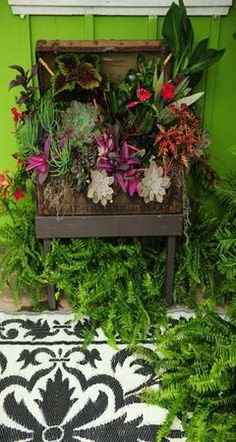 Re-purposed Antique Traveling Chest Garden Planter