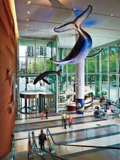 Ann & Robert H. Lurie Children's Hospital of Chicago