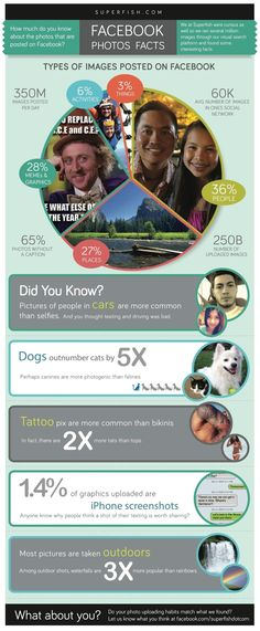 What Types of Photos are Posted on #Facebook #infographic #socialmedia  By www.twitter.com/RiddsNetwork