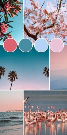 Pantone Colour Palettes, Color Schemes Colour Palettes, Colour Pallette, Pantone Color, Adobe Color Palette, Theme Color, Color Theory, Color Inspiration, Step Guide