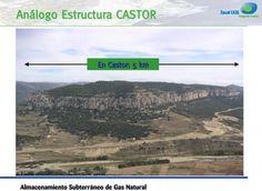 Ecología, naturaleza, periodismo ambiental y sostenibilidad. | EFEverde, noticias ambientales