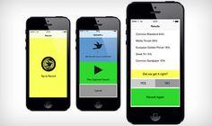 Deze app herkent vogels in jouw omgeving aan hun gefluit