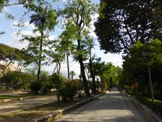 If you would like a nice walk and a quiet place to take a break, check out the Christopher Columbus Monument and walk along Paseo de Catalina de Riber. Seville Spain, Christopher Columbus, Cata, Sidewalk, Walks, Sevilla, Sevilla Spain, Pavement, Curb Appeal