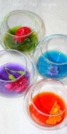 Homemade natural watercolors made from real flowers - This experiment is amazing! Cool science experiment during an art week? Preschool Science, Science For Kids, Art For Kids, Crafts For Kids, Science Ideas, Nature Activities, Craft Activities, Science Projects, Science Experiments
