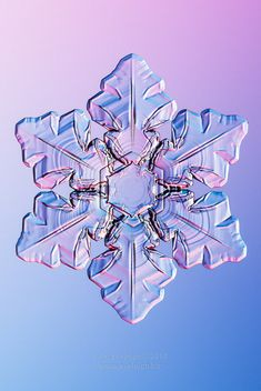 Ephemeral Crystal : ephemeral, crystal, Crystals, Ideas, Crystals,, Snowflakes,