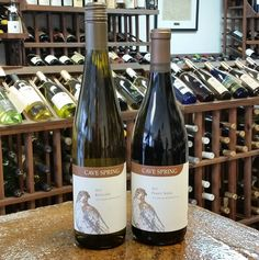 Try wines from our neighbors to the north at this week's wine tasting. We are featuring wines by Cave Springs Winery of the Niagara Peninsula. We will have their award winning Riesling and their Pinot Noir open to taste from 4 to 7 pm this Thursday and Friday. Check out the rest of the winery's line up when you are in. Cave Spring, Pinot Noir, Wine Tasting, Wines, Thursday, Rest, Friday, Drink, Bottle