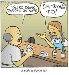 A night at the Oz bar