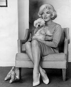 Marilyn Monroe and her pet dog Maf. Maf was a maltese given to Marilyn by Frank Sinatra.